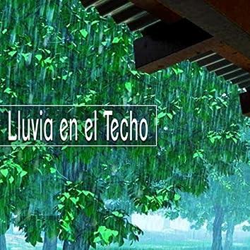 Lluvia en el Techo