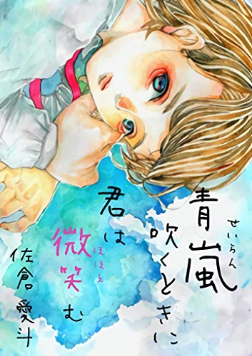 seiranhukutokinikimihahohoemu (Japanese Edition)