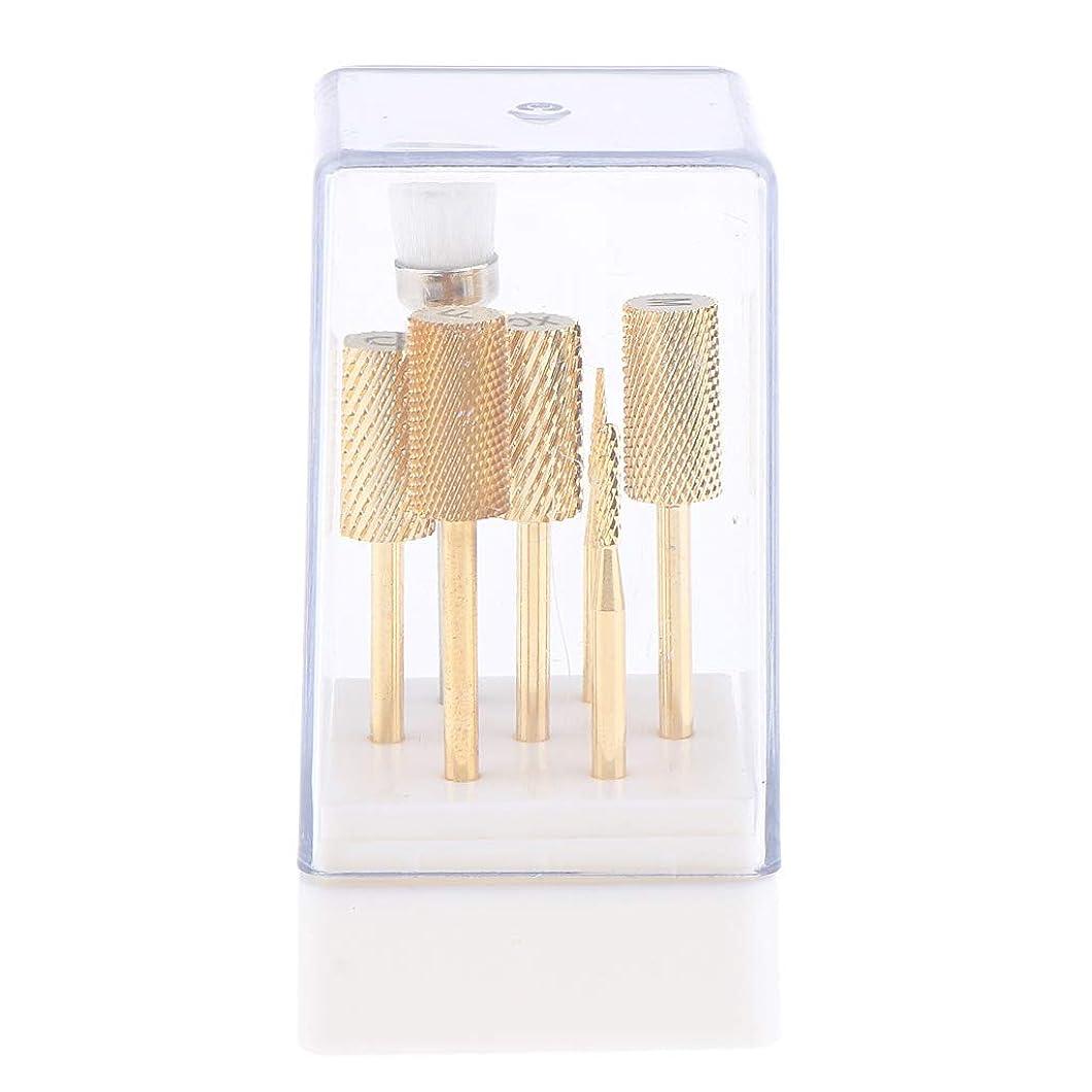 医学伝統南アメリカP Prettyia 7点 ネイルドリルビット 電動ネイルマシン適用 ゴールド ケース付き