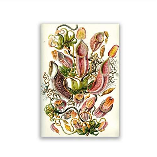 planta carnivora ikea