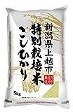 神明 新潟県産こしひかり 特別栽培米白米 5kg 平成26年産