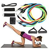 Aebitsry Exercise Bands with Handles 11 Piece Set,Includes Bonus Resistance Band Workout Poster - 5 Workout Bands Combine Up to 125lbs Strength Training, Physical Therapy, Yoga