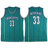 LITBIT Baloncesto de los Hombres NBA Jersey Vintage Charlotte Hornets 33# luto Transpirable rápido Secado sin Mangas Chaleco Superior para los Deportes,Verde,XL