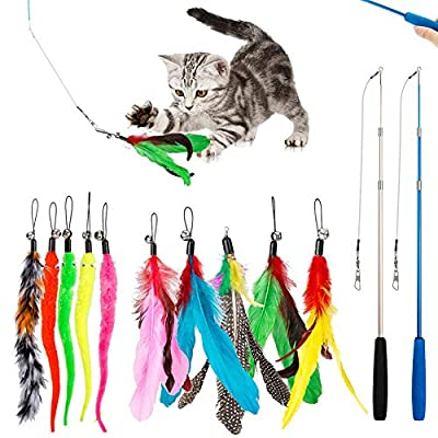 12 PCS Feather Teaser Cat Toy, 2 Pcs Retractable Interactive Cat Teaser Rods, 10 Pcs Replacement Colorful Feather Refills with Bells, Feather Dangler Funny Exercise for Indoor Cat Kitten Catcher