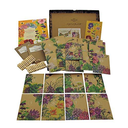 Bio-Saatgut-Adventskalender 2020 - Ausgewählte insektenfreundliche bunte Stauden, Sommerblumen & Wildblumen - befüllt mit 24 Bio-Samentütchen in schönem Design