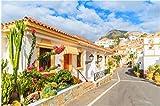 Rompecabezas Puzzle De 1000 Piezas Calle con Apartamentos De Estilo Típico Canario En Costa Adeje Tenerife Islas Canarias España Arte De Bricolaje para Adultos Mayores