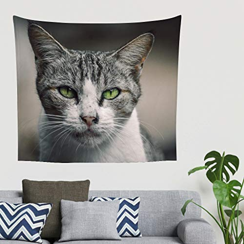 Gamoii Tapiz de pared con diseño de calle, gato, para picnic, playa, yoga, meditación, cómoda, funda para sofá blanca, 230 x 150 cm