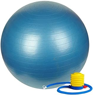 ETCBUYS Premium Exercise Ball 65 cm Extra Thick Yoga Ball and Fitness Balls Yoga Equipment and Accessories for Beginners, ...