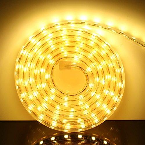 AveyLum, striscia a LED, luce bianca calda, 2835 SMD, impermeabile, con spina europea, per la cucina domestica, come decorazione natalizia (220V) [Classe energetica A +], PVC, bianco caldo 220.00volts