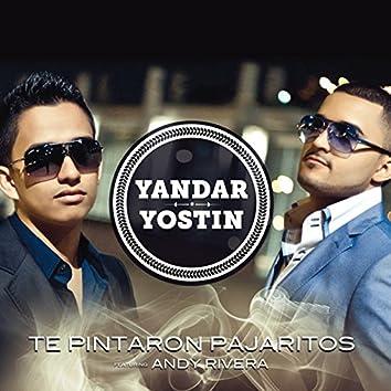 Te Pintaron Pajaritos (Radio Edit) [feat. Andy Rivera]