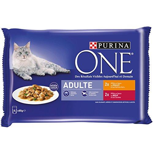 ONE - Chat - Adulte - Effilés en Sauce : Poulet, Bœuf - 4x85g - Lot de 12