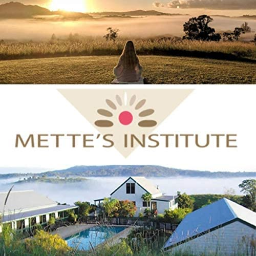 Mette's Institute