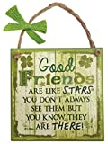 Carrolls Irish Gifts Rustic Ireland 'Good Friends' Wooden Plaque With A Green & White Design
