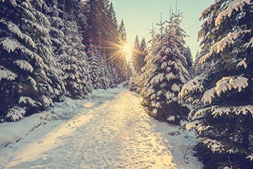 Sun Setting Snowy Mountain Trail Pine Trees Winter Sunset Photo Cool Wall Decor Art Print Poster 36x24