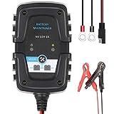 Directtyteam Chargeur de Batterie Automatique Intelligent Réparateur 6 V 12 V 1 A, Pour Automobile Moto Scooter Cycle Profond AGM GEL VRLA Chargeur de Batterie (Ligne de connexion SAE)