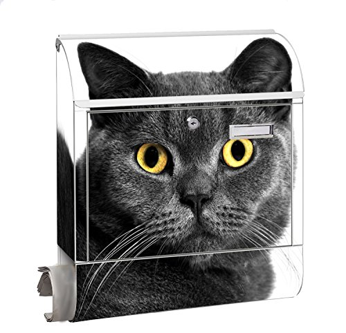 Design Motiv Briefkasten Maxi mit Zeitungsfach Zeitungsrolle für A4 Post slk shop Groß Katze schwarz