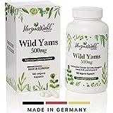 HERZENSWAHL® Wild Yam Wurzel-Extrakt