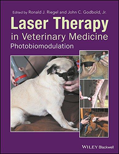 Laser Therapy in Veterinary Medicine: Photobiomodulation (English Edition)