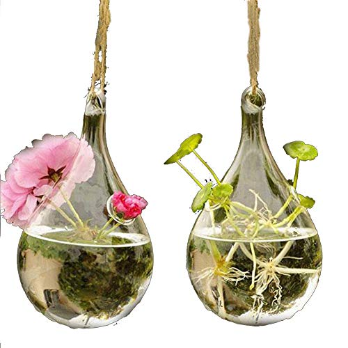 Candora 2 Stks Water Drop Vorm Hydroponische Planten Kwekerij Pot Opknoping Glas Vaas Home Decor