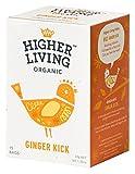 Infusión de jengibre - Higher Living - caja de 4 uds de 37 gr. (Total: 148 gr.)
