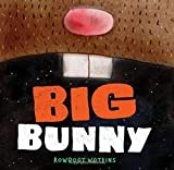 Big Bunny: (Funny Bedtime Read Aloud Book for Kids, Bunny Book)