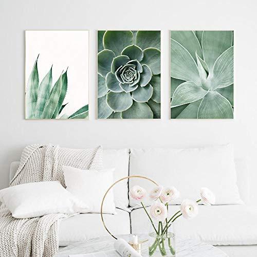 Póster de lienzo de cactus de plantas suculentas, impresión artística de línea abstracta, pintura de Yoga, cuadro artístico de pared nórdico, decoración para sala de estar, 51x71cmx3 sin marco
