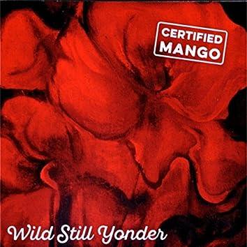 Wild Still Yonder