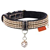 PetsHome Dog Necklace For Small Dogs