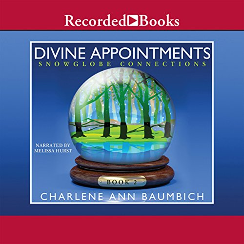 Divine Appointments audiobook cover art