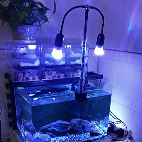 WML-LAMP Aquarium LED Beleuchtung Aquarium Licht Spot Licht E27 E27 LED Luz mit Doppelkopf for Marine Coral Reef SPS LPS Aquarium (Color : Customized Colors)