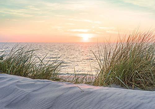 VLIES Fototapete-DÜNEN-254x184 cm-2 Bahnen-(11851V4)-Inkl. Kleister-EASYINSTALL-PREMIUM-Bäume Küste Palmen-Strand Sonne Insel Beach Brücke Meer Skyline Gras Palmen Nordsee Ostsee Wiese Sunset