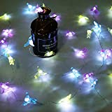 40 LED Hummingbird Fairy String Lights Waterproof Battery Operated 8 Modes with Remote Control for Wedding, Party, Festival, Indoor, Outdoor (Hummingbird)
