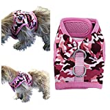 Pretty Pampered Pets UK Puppy Dog Harness for New Dachshund Yorkie Shih Tzu Maltese Yorkie Toy Poodle Bichon (XS/Small, Pink Camo)