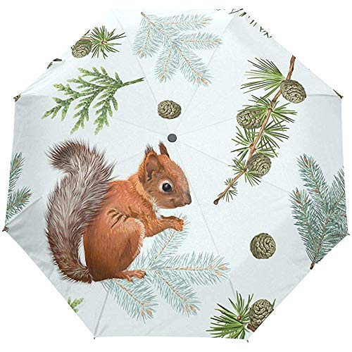 EW-OL Eichhörnchen Muster Regenschirm Winddicht Regen Automatisch Öffnen Schließen Falten Reisen Anti-UV Sonnenschirme