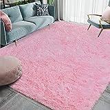 Homore Luxury Fluffy Area Rug for Bedroom Living Room Soft Carpets, Super Cute Comfortable Shag Rugs Modern Carpet for Kids Nursery Girls Home, 4x6 Feet Pink