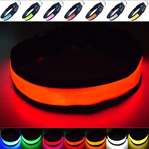 """Fun Pets Hundesicherheitshalsband mit ultraheller, wiederaufladbarer LED mit hervorragender Sichtbarkeit und erhöhter Sicherheit Medium (40cm - 50cm / 15.7\"""" - 19.7\"""") Rot"""