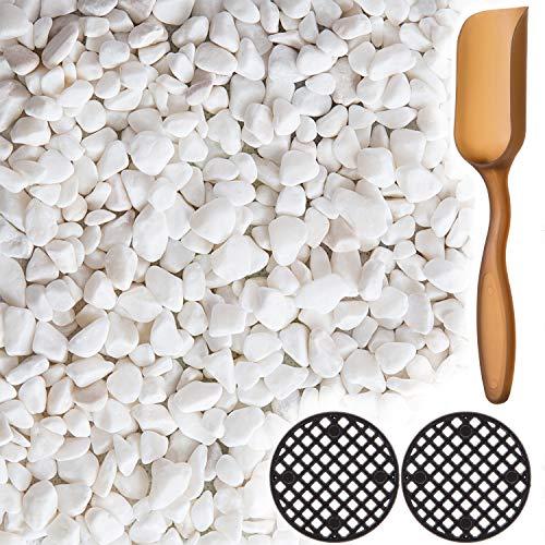 LIHAO White Pebbles Natural Garden 3/8'' Pebbles for Plants, Succulent, Terrariums Decoration - 1 Pound