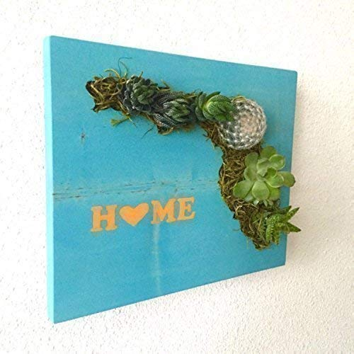 HOLIDAY GIFT: Home State Succulent + Cacti Vertical Garden || Living Wall || Wall Planter || Hanging Planter - Order by 12/9 to receive by X-MAS