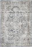 The Rug Collective Distressed Vintage Kendra Ash Area Rug Perfect for Living Rooms, Bedrooms, Dining Rooms/Easy to Clean, Durable, Stylish and More