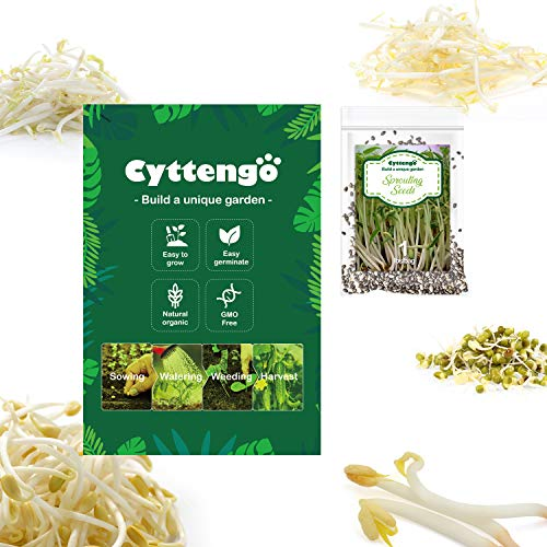 Delxo Broccoli Sprouting Seeds, Organic&Non GMO,Grow in USA , 1lb