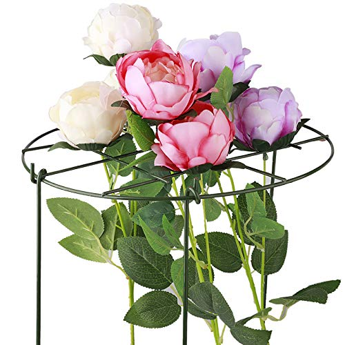 ADSRO Plant Support Garden Stakes, Mini DIY Climbing Trellis Flower Supports Peony Cages for Ivy Roses Cucumbers Clematis Supports