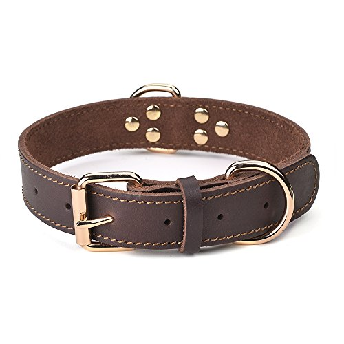 DAIHAQIKO Leather Dog Collar Genuine Leather Alloy Hardware Double D-Ring 3 Best for Medium Large and Extra Large Dogs (M: 1' Wide for 16'-20' Neck, Single Stitch - Brown)