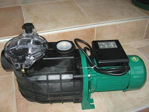 Leis 1100 Poolpumpe 19,8 m³ selbstansaugend Filterpumpe Schwimmbadpumpe Pumpe Pool Schwimmbad