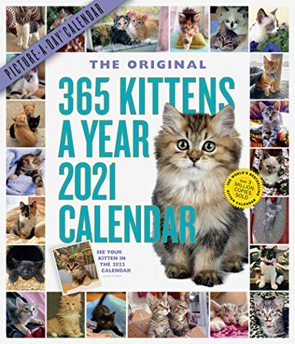 The Original 365 Kittens A Year Picture-a-Day 2021 Calendar