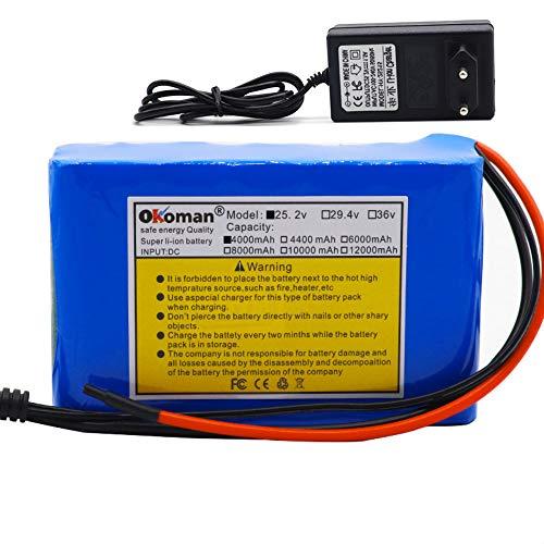 Batteria agli Ioni di Litio 6s2p 24V 4Ah Batteria agli Ioni di Litio per Ciclomotore da Bicicletta Elettrica 25,2v 4000mAh con BMS + Caricabatterie