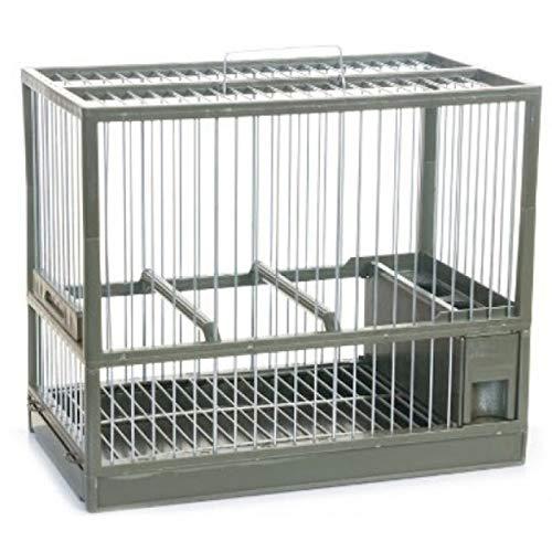 Complementos Para Aves - Jaula de reclamo C2 Verde Liso, con cajón y Rejilla