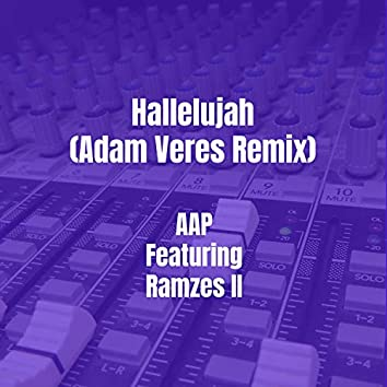 Hallelujah (Adam Veres Remix)