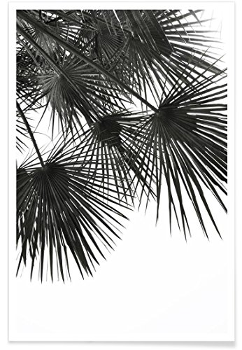 """JUNIQE® Palmen Schwarz & Weiß Poster 30x45cm - Design """"Endless Summer - Wind"""" entworfen von Studio Nahili"""