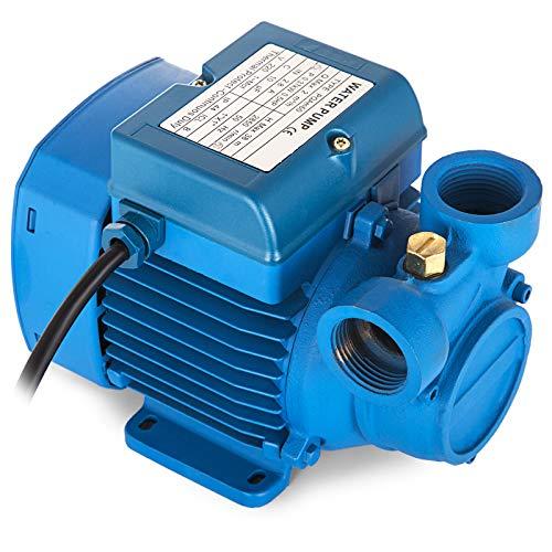 GIOEVO Pompa Centrifuga da Giardino Pompa Acqua in Acciaio Inox da 370 W con Recipiente a Pressione (PQAm 60)