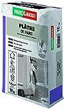 ParexGroup LA2960 - Yeso de París 2960 10 kg